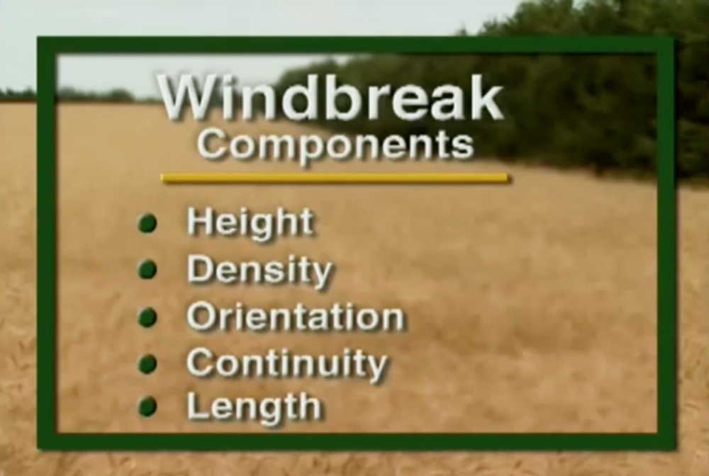 Windbreaks - Components