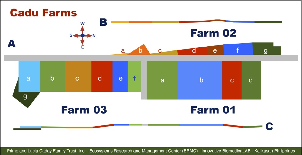 Schematic Map of Farms 01 to 03 in Cadu, Ilagan.