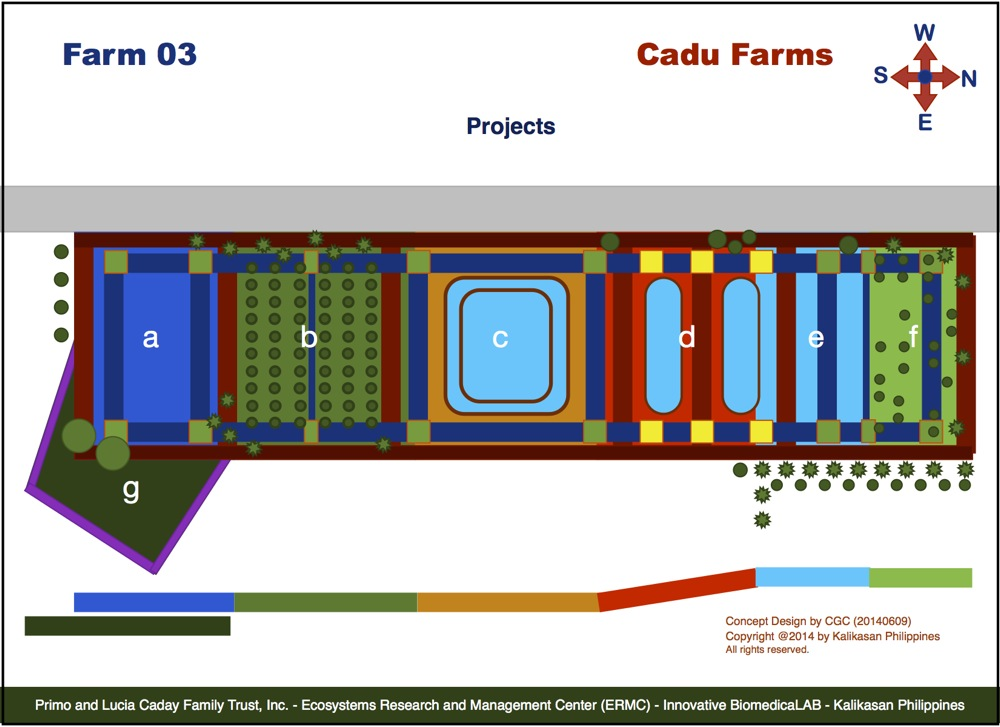 Schematic Map of Cadu Farm 03 with a number of  the proposed EcoCulture projects superimposed