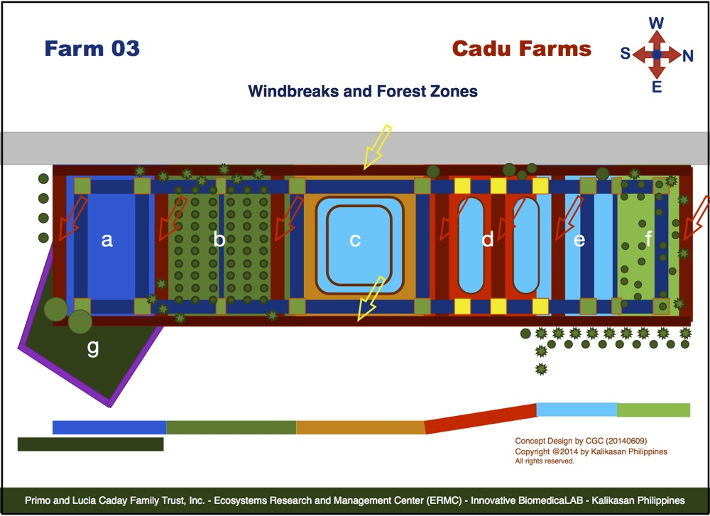 Cadu Farm 03 Projects : Windbreaks and Forest Zones