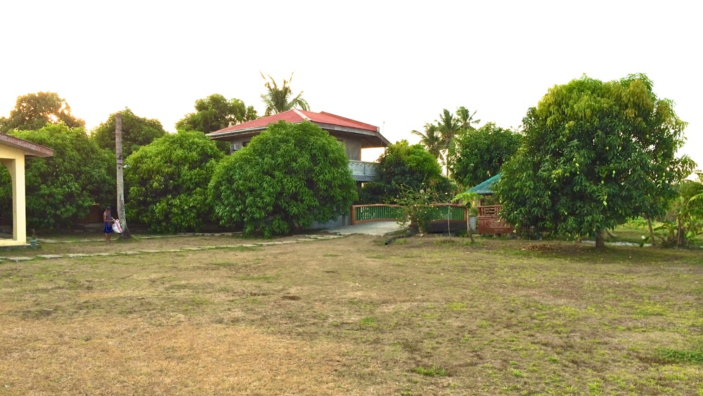 Main rest house of the resort surrounded with mango trees.