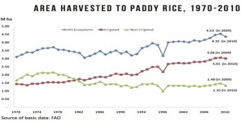 Are there really more than 3 million hectares of irrigated rice fields in the Philippines?