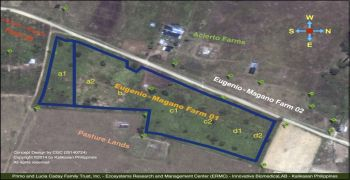 Eugenio-Magano Farm 01 (Cadu, Ilagan) EcoCulture Projects : Canals and Local Irrigation System