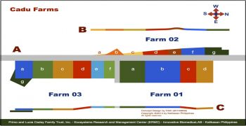 Schematic Map of Farm 01 to Farm 03, Cadu, Ilagan