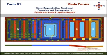 Cadu Farm 01 Projects :  Canals and Local Irrigation System