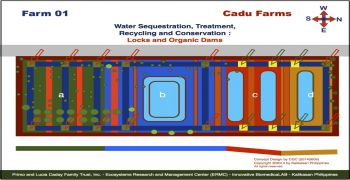 Cadu Farm 01 Projects : Locks and Organic Dams