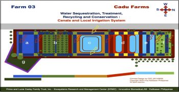 Cadu Farm 03 Projects : Canals and Local Irrigation System