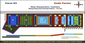 Cadu Farm 03 Projects : Water Sequestration Ponds